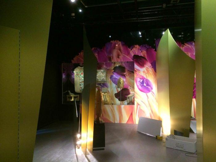 Auvergne-Allier-Moulins-Exposition Fleurs de la gloire2