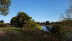 La rivière Allier au petit matin