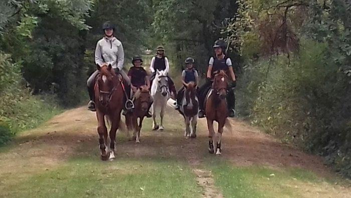 centre equestre yzeure